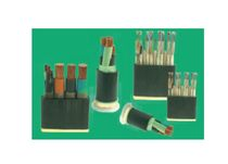 electric power distribution cable   Chint Electric Co.,Ltd.