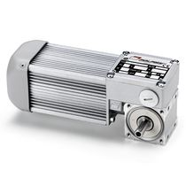electric worm gearmotor 3 Nm | BC2000 MINIMOTOR