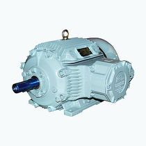explosion proof asynchronous electric motor 0.45 MW, 0.65 kV CG Power Systems