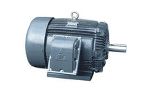 explosion proof asynchronous electric motor  TECO Industrial Motors & Applications
