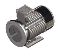 explosion proof asynchronous electric motor 0.09 - 18.5 kW SEIPEE