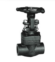 forged steel globe valve 3 000 psi | GV-GB-FT  John Valve