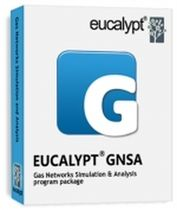 gas network modeling, simulation and analysis software EUCALYPT® GNSA EUCALYPT Systems, Inc.