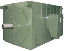 high-voltage asynchronous electric motor max. 1600 kW | HV series FIMET Motori & Riduttori S.p.a.