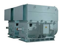 high-voltage explosion proof three-phase asynchronous electric motor 160 - 4 000 kW | HXV2 CAG Electric Machinery s.r.o.