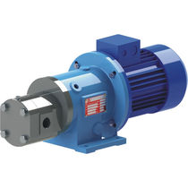 internal gear pump with magnetic coupling max 80 mc/h, max 30 bar | GS MAG-M M PUMPS