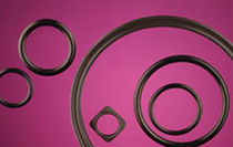mechanical seal  Technical Rubber Products