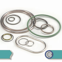metal O-ring seal  HTMS High Tech Metal Seals