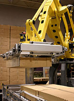 palletizing robot  Weldon Solutions