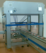 pick and place packaging robotic cell AFS SynchroPACK