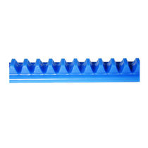 plastic rack and pinion 2 000 mm | FrgRack-2.00-1 Excitron Corporation