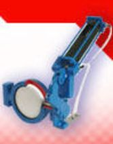 pneumatically actuated butterfly valve  Reg Technology