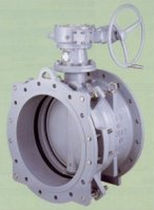 resilient seated lug butterfly valve 200 - 1 000 mm, 1.6 MPa | BT-AR KUBOTA Valve division