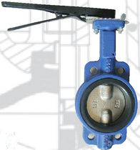 resilient seated wafer butterfly valve  Reg Technology