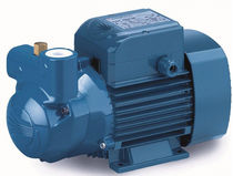 self-priming centrifugal liquid ring pump max. 50 l/min | NPP-CK series TESTUD