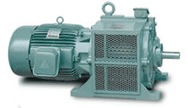 squirrel cage induction motor  TECO Industrial Motors & Applications