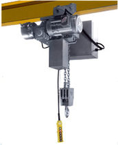 stainless steel electric chain hoist  David Round Company, Inc.