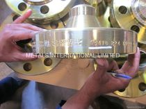 "stainless steel flange 24"", PN 250 Metals International Limited"
