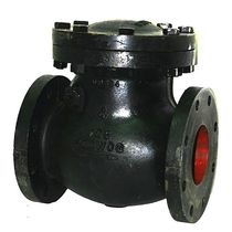"swing check valve 2 - 20"", 200 psi 