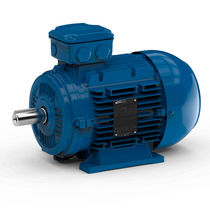 three-phase asynchronous electric motor 210 - 690 VAC Watt Drive Antriebstechnik GmbH