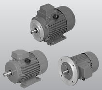 three-phase asynchronous electric motor  SATI
