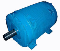 three-phase asynchronous squirrel cage electric motor 26 - 4 500 Nm | AR series Sicme Motori