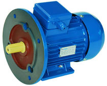 three-phase asynchronous squirrel cage electric motor IP 55 | GOST АИP series FUFA motor