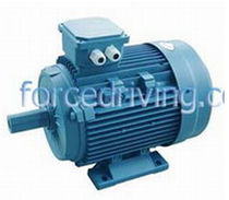 three-phase asynchronous squirrel cage electric motor 0.18 - 315 kW China Forcedriving Group Ltd.