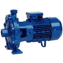 two stage centrifugal water pump 50 l/min, 6 bar | 2CM 25/130A series Speroni