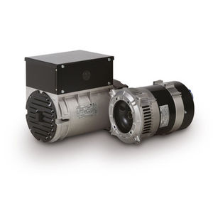 2 pole alternator all industrial manufacturers three phase alternator 2 pole medium voltage high voltage asfbconference2016 Images