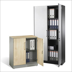 Office Cabinet / Floor Mounted / Hinged Door / Shelf