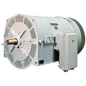 AC motor / asynchronous / high-voltage