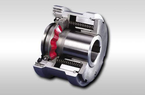 torque limiter with sprocket wheel - RINGSPANN