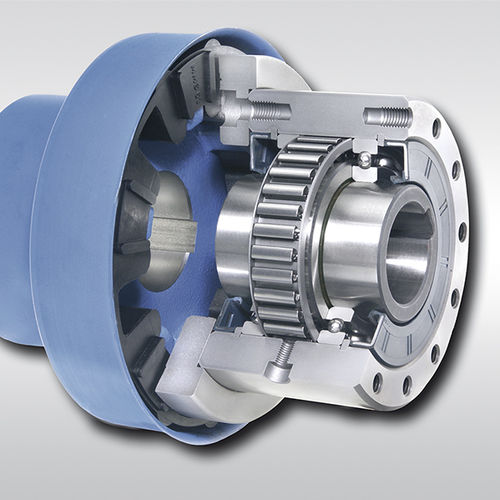 Bearing-mounted one-way clutch / with coupling / full-face / sprag FBE series RINGSPANN