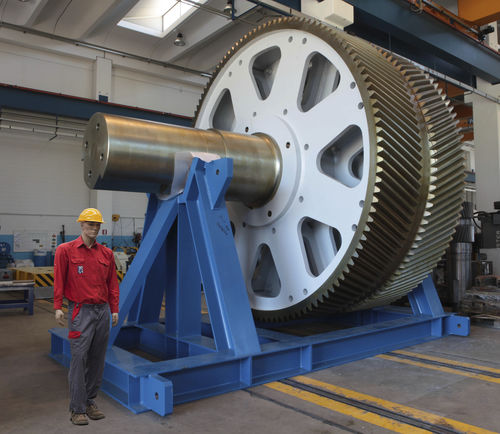 helical-toothed gear wheel / shaft