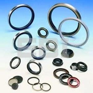 O-ring seal / C-ring