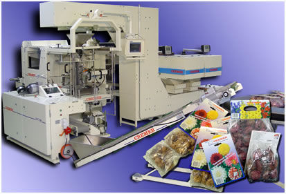 VFFS bagging machine / automatic / food / industrial max. 65 p/min | CPT-300 Cremer speciaalmachines BV