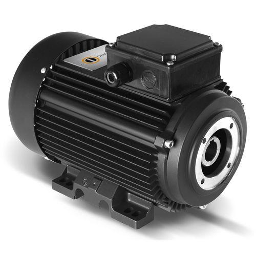 hollow-shaft motor - ORANGE 1 ELECTRIC MOTORS SPA