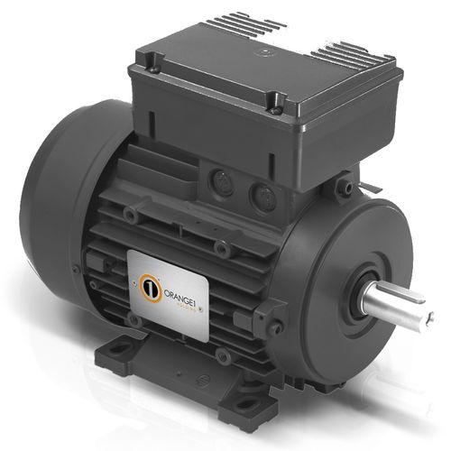 single-phase motor / asynchronous / 230 V / 4-pole