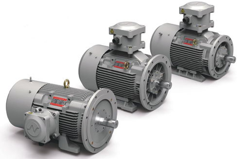 explosion-proof motor / three-phase / induction / 500 V
