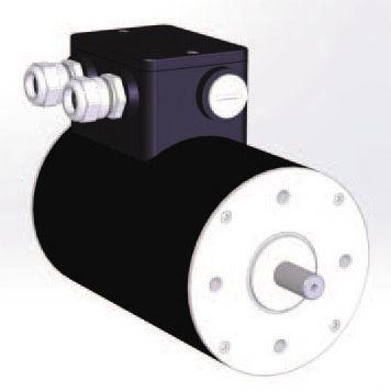DC motor / brushless / 48V / 8-pole