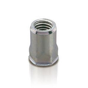 hexagonal nut / blind rivet / steel