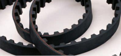 toothed transmission belt / neoprene / rubber