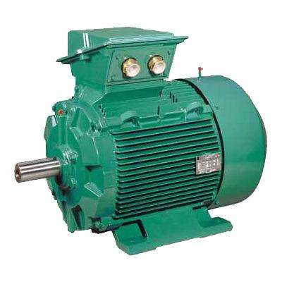 AC motor / three-phase / asynchronous / 400V FLSES LEROY-SOMER