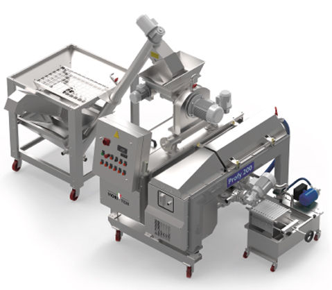 olive oil production line / automatic
