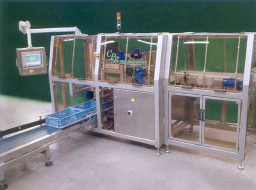 case / tray packer 80 p/min | CL64 CPS CASE PACKING SYSTEMS