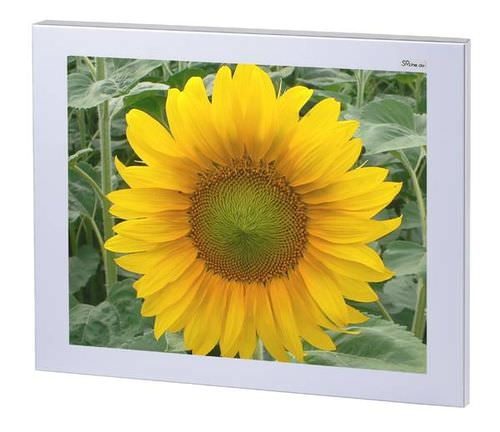 high-brightness LCD monitor 38 cm (15&quot;), 1 024 x 768 px | M-FLAT 15/32012c SR SYSTEM-ELEKTRONIK GmbH