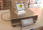 platform scale / benchtop / counting / digital