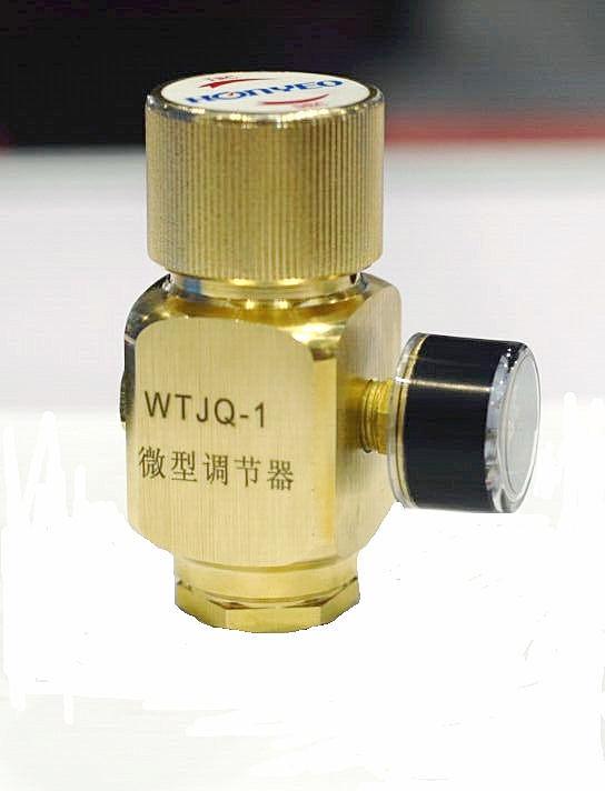 Precision adjustment pressure regulator for Portable gas