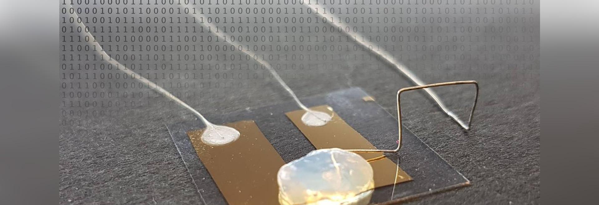 KIT Physicists Develop World's Smallest, Single-Atom Transistor